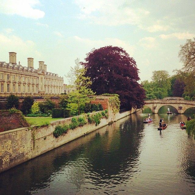 The Tree Academy_Du học Anh_ Cambridge_Đại học Cambridge_ Oxbridge