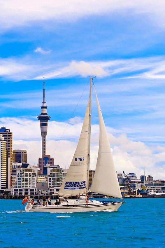10 việc nên làm khi đến New Zealand _ The Tree Academy