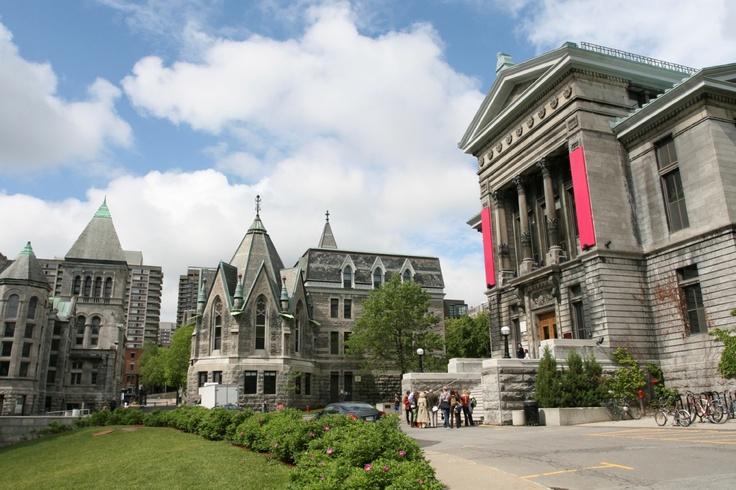 The_Tree_Academy_Du_học_Canada_ Đại học McGill hay Đại học Toronto