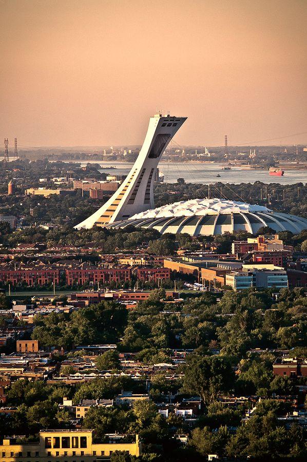 The_Tree_Academy_Du_học_Canada_Đại học McGill hay Đại học Toronto