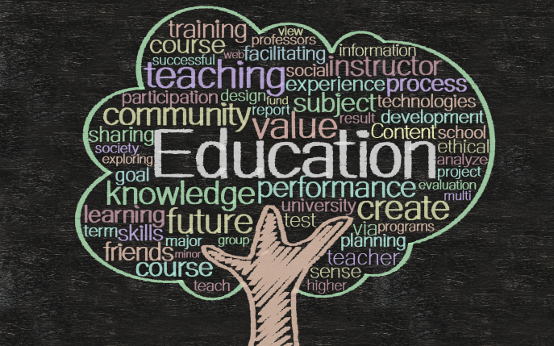 The Tree Academy _ Education is worth spreading