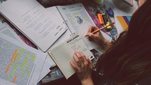 TheTreeAcademy_bang_thac_si_studying_ Các loại bằng thạc sĩ và cách phân biệt