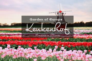 Lễ hội hoa Keukenhof – Khu vườn của Châu Âu